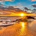 Beach Glory
