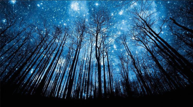 Starry Glory